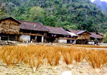 Du lịch khám phá làng làm hương Phia Thắp Cao Bằng
